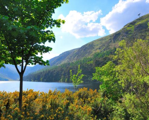 Glendalough Lakes