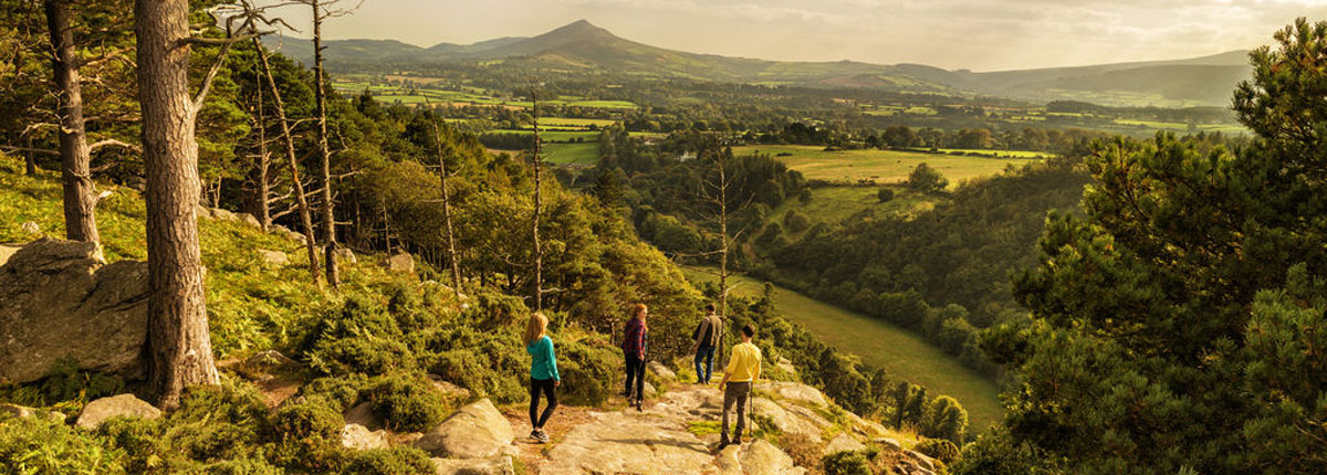 Guided walks in Wicklow